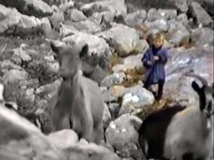 Luka Modric, de pequeño, cuidando cabras