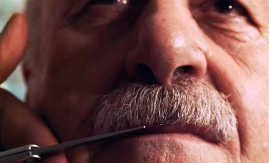 El bigote de Vicente del Bosque